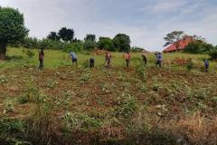2019-01-20 Gartenarbeit